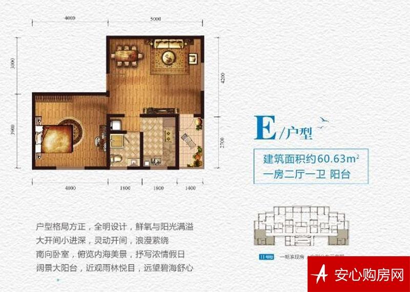 海湾雨林E户型 1室2厅1卫 60.63